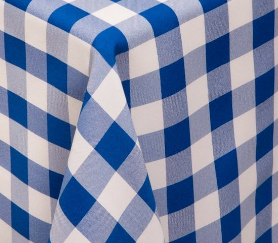 Blue and White Checkered Polyester