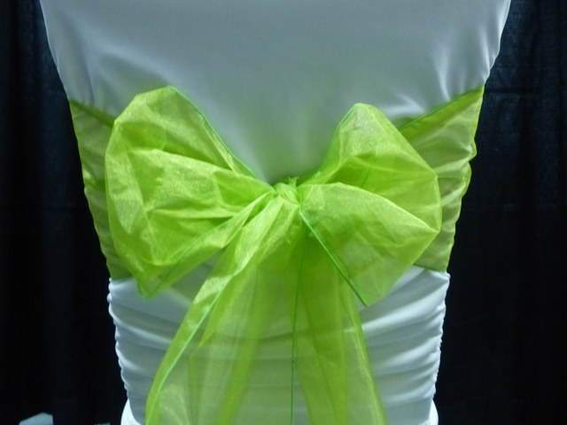 Lime Green Organza
