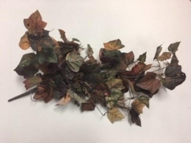 Fall Ivy_640x480
