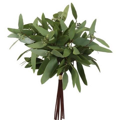 Eucalyptus Bundle, 16 inch_480x480