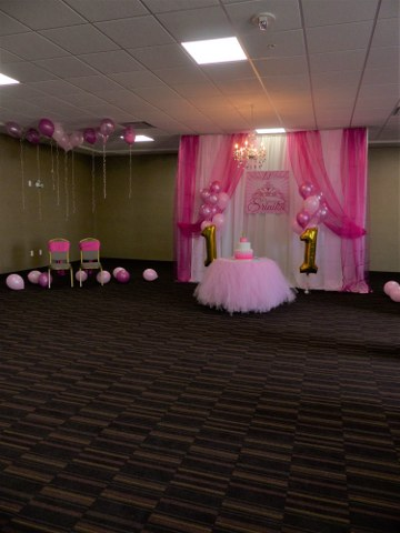 Pink 1St Birthday Backdrop_360x480