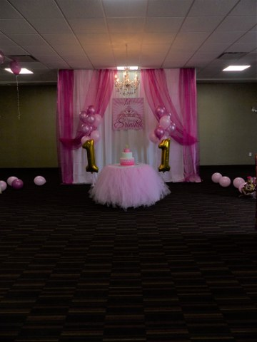 Pink Party Backdrop_360x480