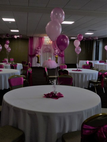 Pink Princess Party_360x480