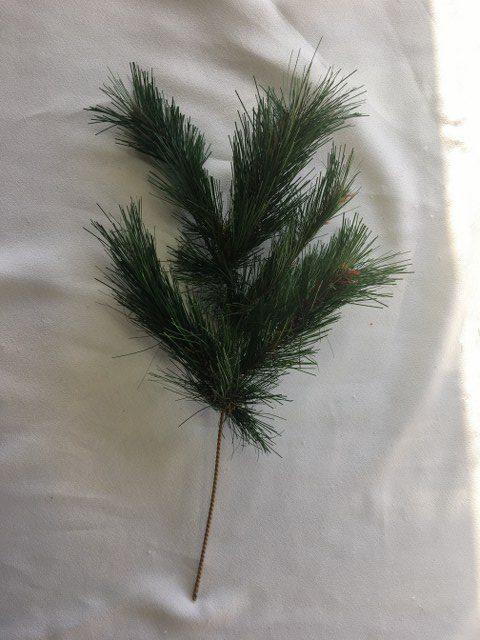 18-inch Plain Pine Pic_640x480
