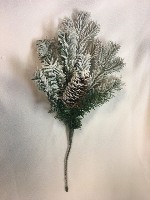 Spruce Branch w Snow & Cones_640x480