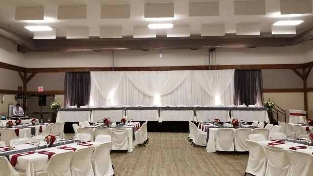 Ivory and Grey Voile Backdrop_640x360