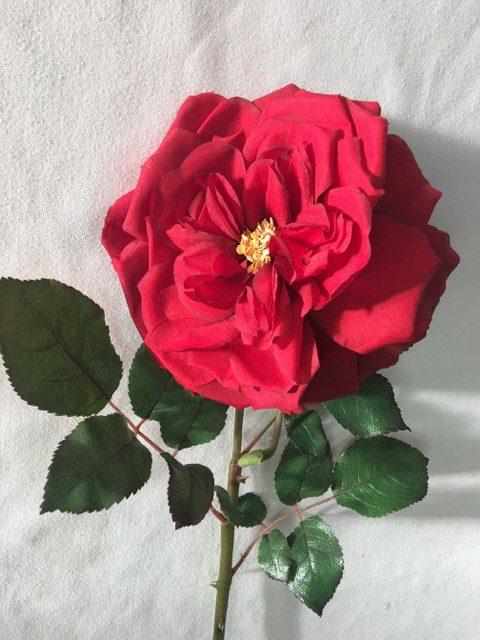 Artificial Camelot Rose Stem, Long Stem, Red_640x480