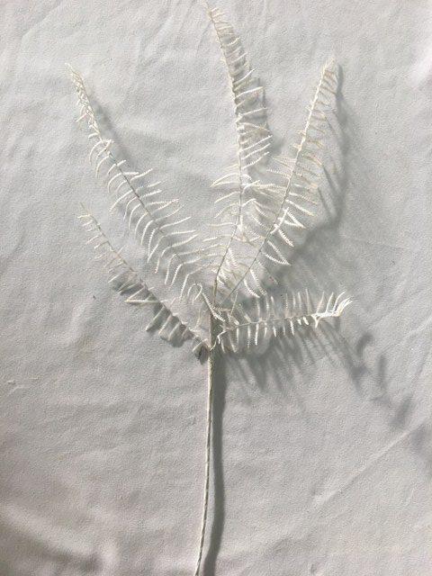 Artificial Fern Stem, White Glitter_640x480