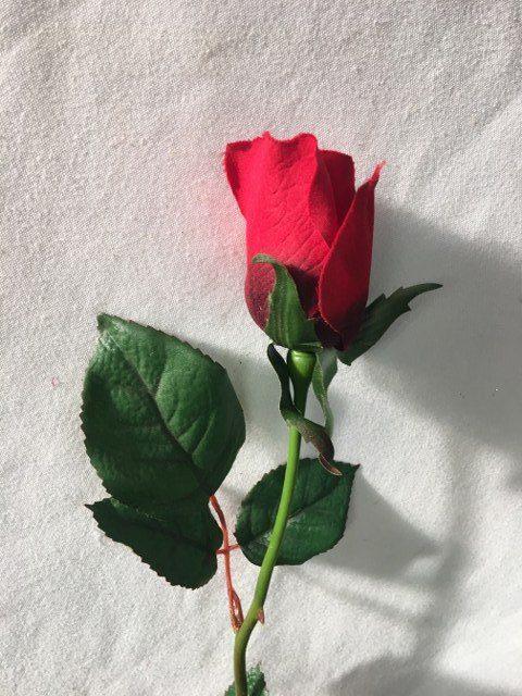 Artificial Rose Stem, Long Stem, Red_640x480
