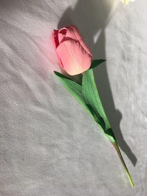 Artificial Tulip, Pink_640x480