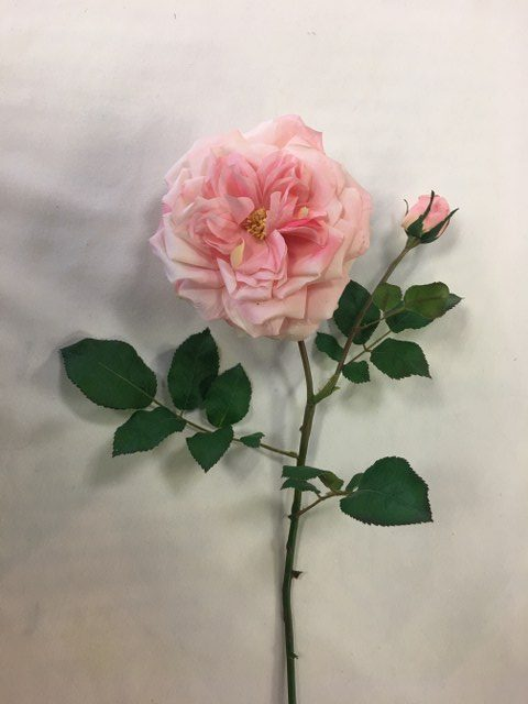 Artificial Westminster Rose, Pink, Long Stem_640x480