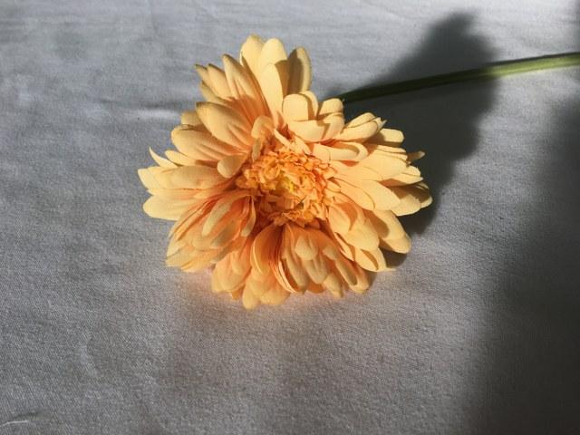 Gerber Daisy, Soft Yellow, Artificial Long Stem_640x480